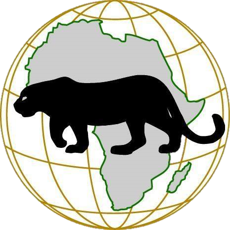 Groupe AFRICA SECURITY